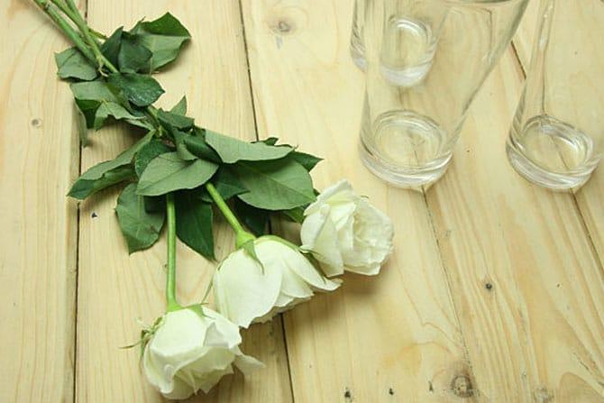 rosas-arco-iris_3