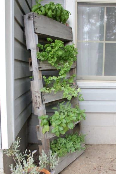 Ideias para o jardim com paletes 6