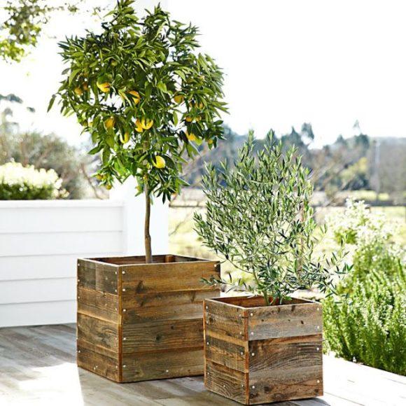 Ideias para o jardim com paletes 64
