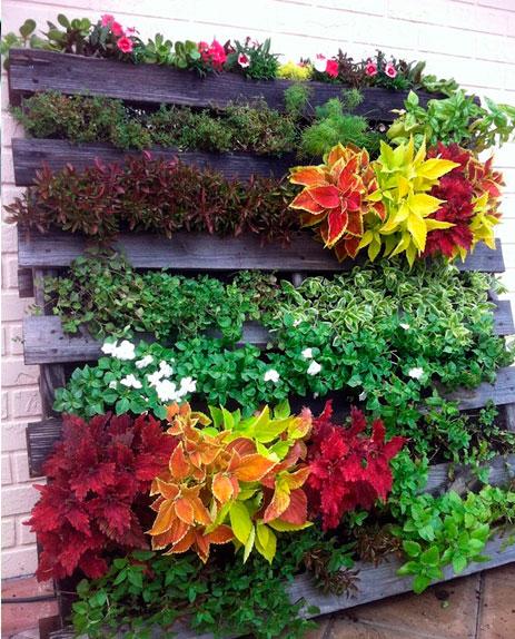 Jardim-vertical-com-palete-de-madeira-10