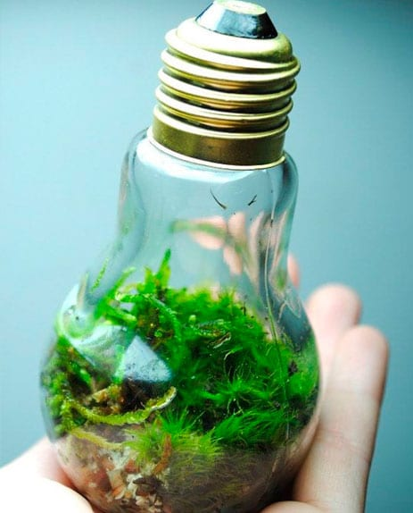 Reciclar-lampadas-velhas-16