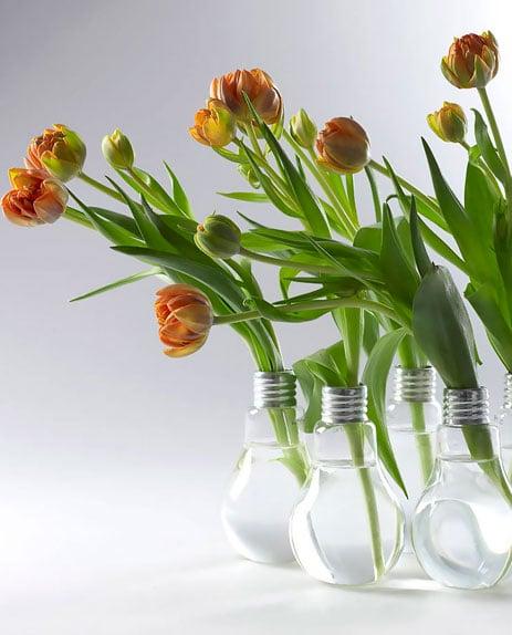 Reciclar-lampadas-velhas-7