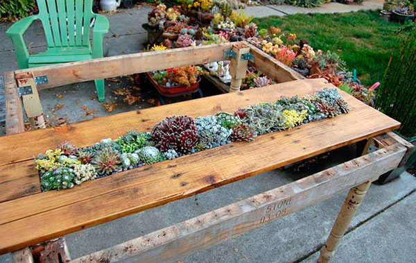 mesa-de-palete-com-mini-jardim-6
