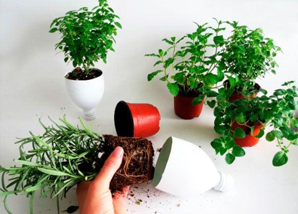 Jardim-aromatico-com-paletes-de-madeira-5