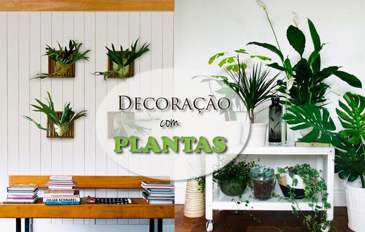 Muito 17 Ideias Criativas para a Decoração com Plantas YS83