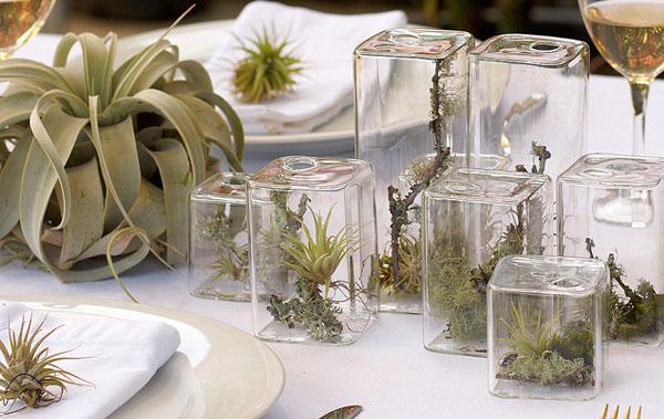 decoracao-plantas-1