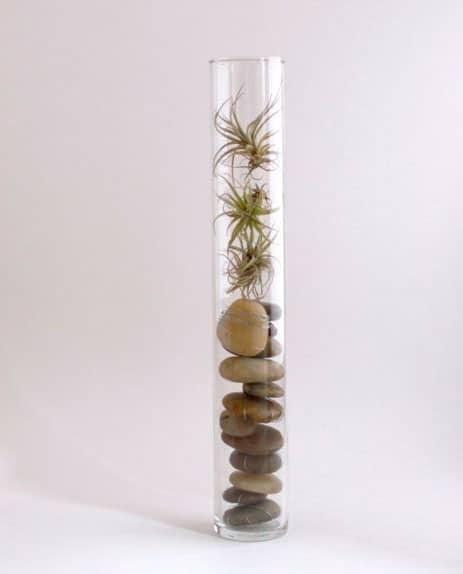 decoracao-plantas-11