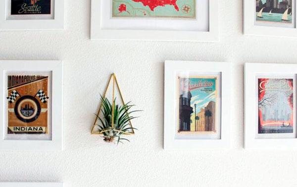 decoracao-plantas-3