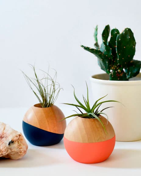 decoracao-plantas-9