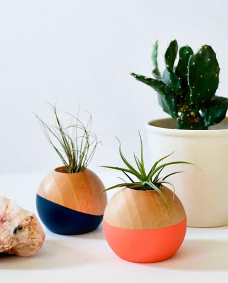 decoracao-plantas-9