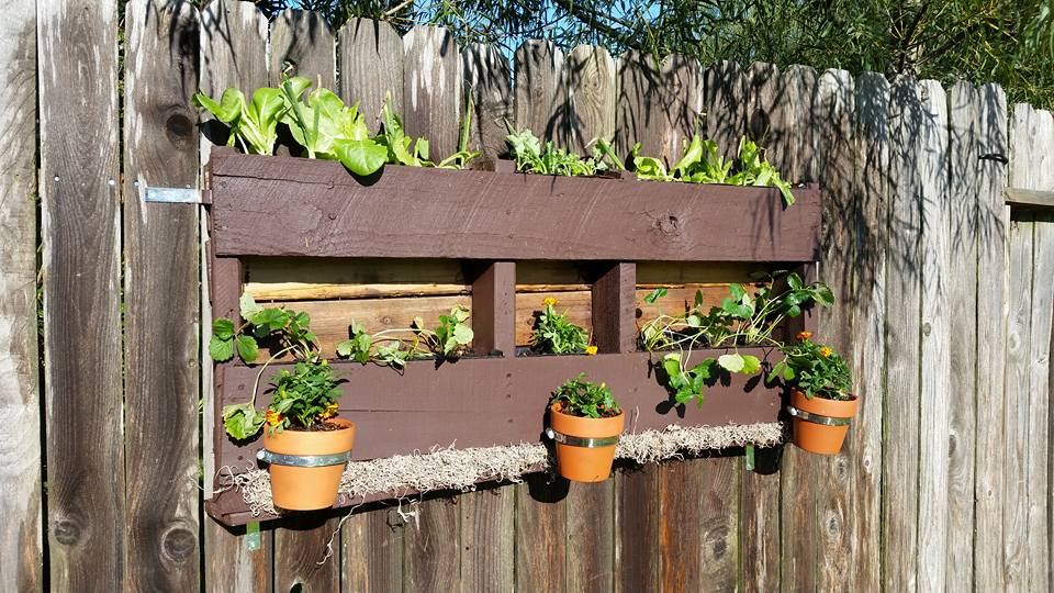wooden-pallet-planter-and-pot-organizer