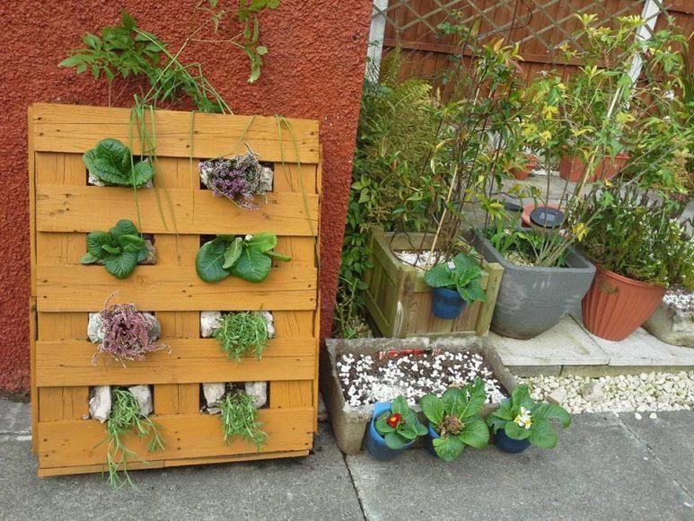 wooden-pallet-vertical-planter