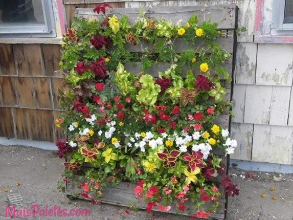 jardim de palete
